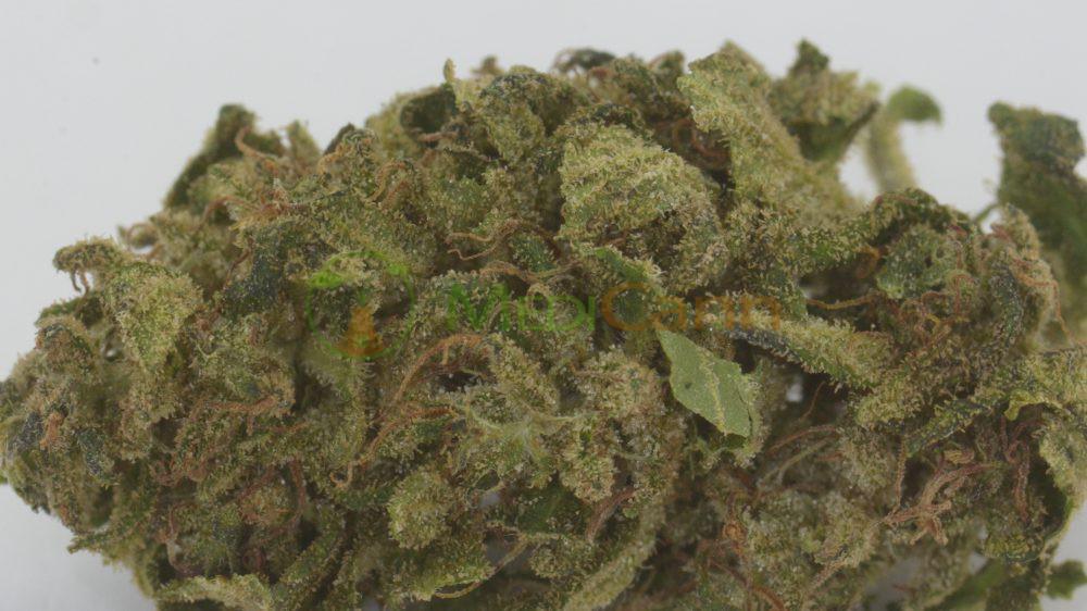 CBD Outdoor Blüten - MediCann Grün - Lemon K2