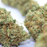 CBD Indoor Blüten – MediCann Gold – Sour Widow