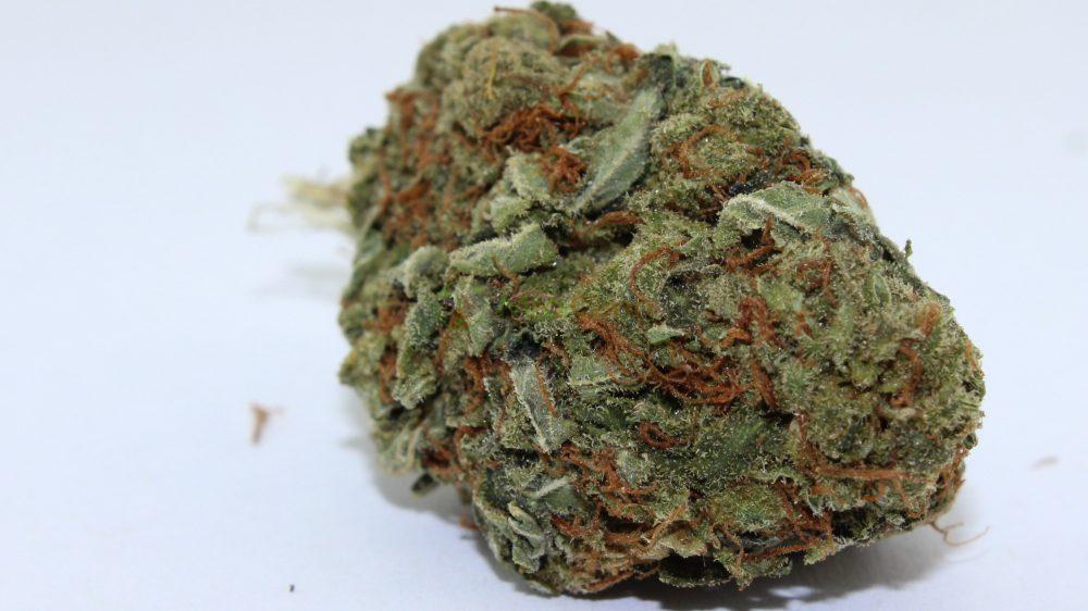 CBD Treibhaus Blüten – MediCann Blau- Super Bud